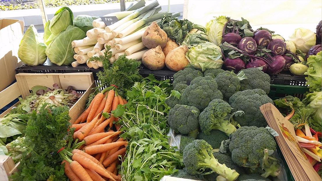 Biomonkie voor verse groenten